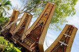 indonesia-traditional-sweeping-elaborately-painted-houses-boat-shaped-roofs-tana-toraja-tongkonan-house-south-sulawesi-34229569[1]