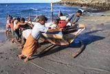 lamalera-whalers-pushing-boat-16929439[1]